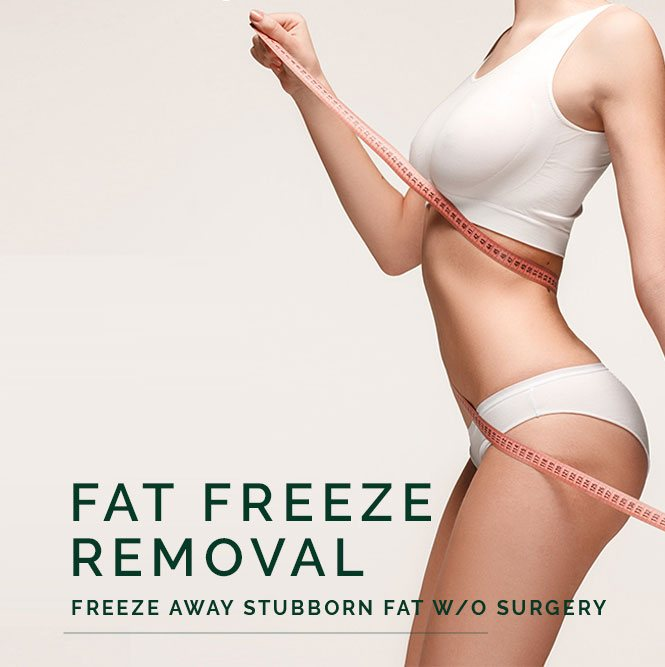 fat freeze removal body
